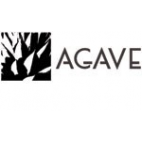 agave-emmanueleregali
