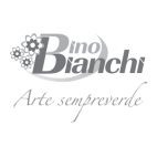 Bianchi-dino-emmanueleregali